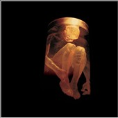 Alice in Chains: Nothing Safe: Best of the Box