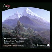 Magnificent Landscapes: Beethoven's Last Piano Sonatas