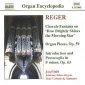 Organ Encyclopedia - Reger: Chorale Fantasia, etc / Still
