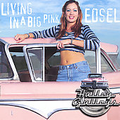 Hulley Gulleys: Living in a Big Pink Edsel