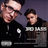 3rd Bass: Icon