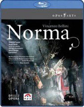 Bellini: Norma / Reynolds/Netherlands Chamber Orchestra [Blu-Ray]