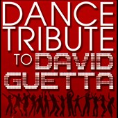 Various Artists: Dance Tribute to David Guetta