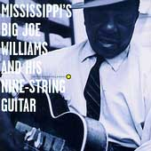 Big Joe Williams: Mississippi's Big Joe Williams and His Nine-String Guitar