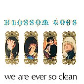 Blossom Toes: We Are Ever So Clean