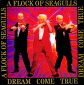 A Flock of Seagulls: Dream Come True