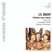 Bach: Cantatas for Solo Bass / Kooy, Herreweghe, et al