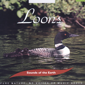 Various Artists: Sounds of the Earth: Loons