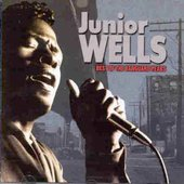 Junior Wells: Best of the Vanguard Years