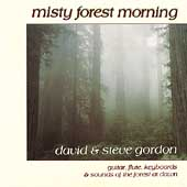 David & Steve Gordon: Misty Forest Morning
