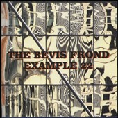 The Bevis Frond: Example 22 *