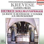 Krevese Gansen-Orgel / Dietrich Kollmannsperger